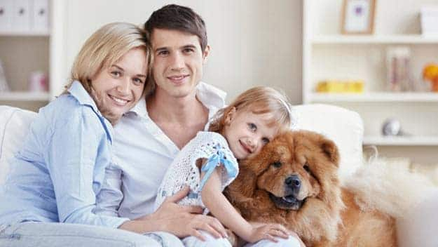 Wills & Trusts dog-young-family Direct Wills Cambridgeshire